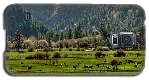 Garden Valley Elk Herd Galaxy S5 Case