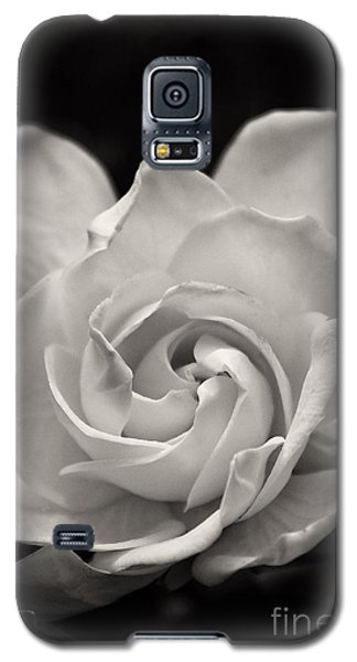 Gardenia Bloom In Sepia Galaxy S5 Case
