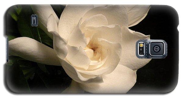Gardenia Blossom Galaxy S5 Case by Deborah Smith