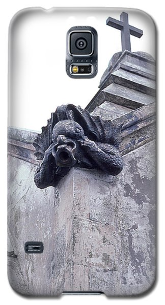 Gargoyle On The Italian Vault Galaxy S5 Case
