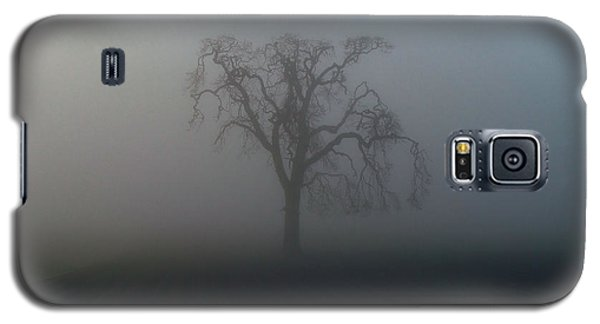 Galaxy S5 Case featuring the photograph Garry Oak In Fog by Cheryl Hoyle