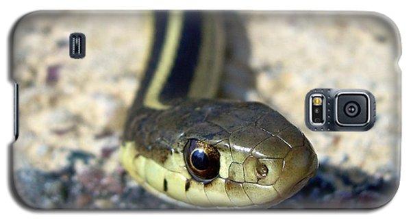 Garter Snake Galaxy S5 Case