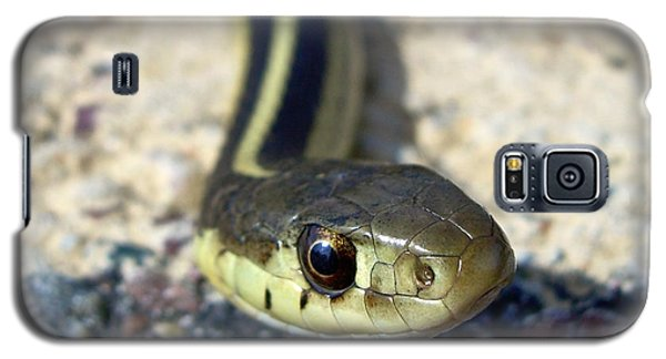 Garter Snake Galaxy S5 Case by Kent Lorentzen