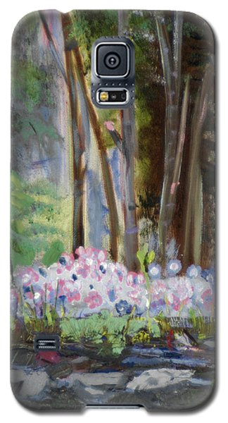 Galaxy S5 Case featuring the painting Gateway At The Balsams by Michael Daniels