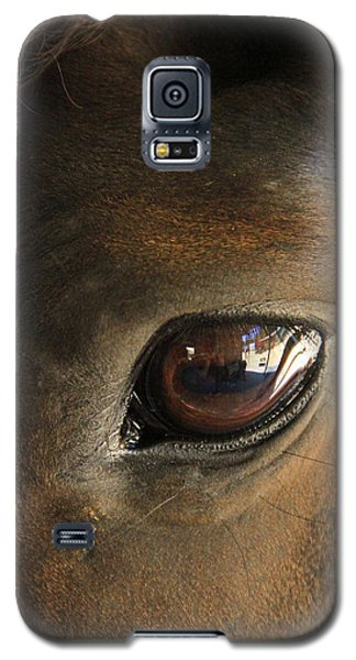 Gateway To A Horses Soul Galaxy S5 Case by Shoal Hollingsworth