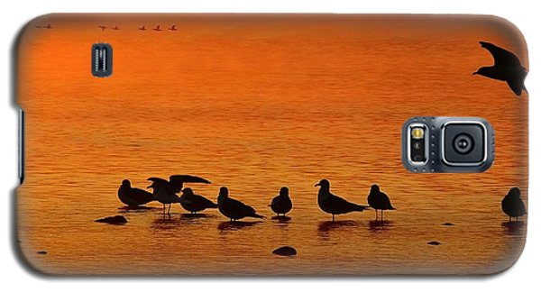 Gathering At Sunrise Galaxy S5 Case