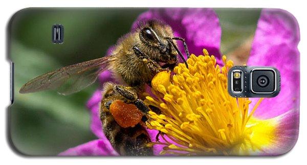 Gathering Pollen Galaxy S5 Case