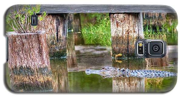 Gator At The Old Trestle Galaxy S5 Case