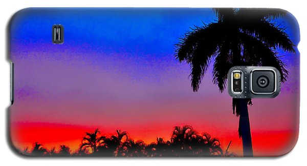 Gator Nation Sunset Galaxy S5 Case