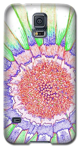 Gazania No.1 Galaxy S5 Case