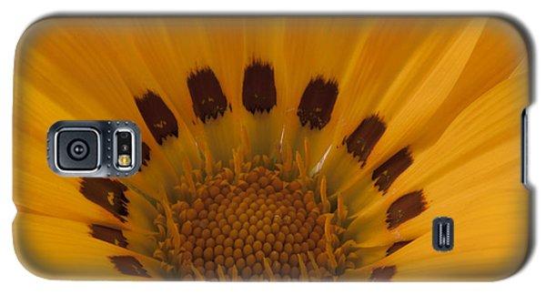 Gazania Stamen Macro Galaxy S5 Case by Sandra Foster