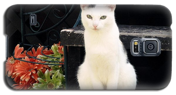 Gaze Galaxy S5 Case