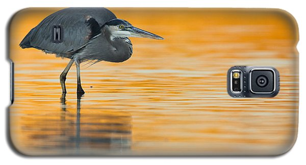 Galaxy S5 Case featuring the photograph Gbh In Orange Water by Bryan Keil