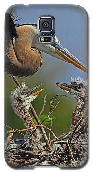 Great Blue Heron Twins Galaxy S5 Case