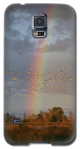 Geese And Rainbow Galaxy S5 Case