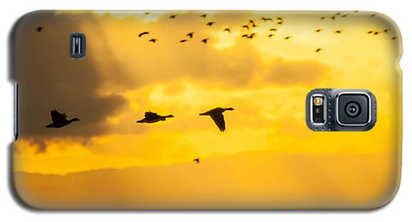 Geese At Sunset-2 Galaxy S5 Case