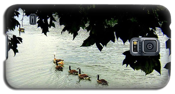 Geese On The Lake Galaxy S5 Case