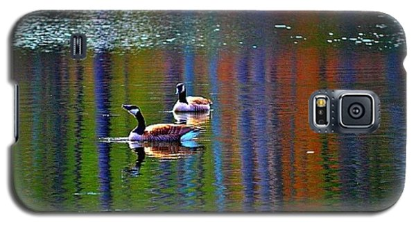 Galaxy S5 Case featuring the photograph Geese On The Lake by Tara Potts