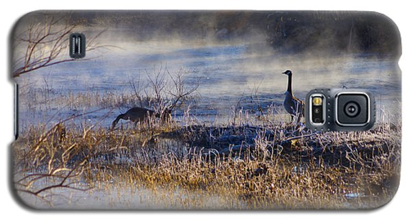 Geese Taking A Break Galaxy S5 Case by Jennifer White