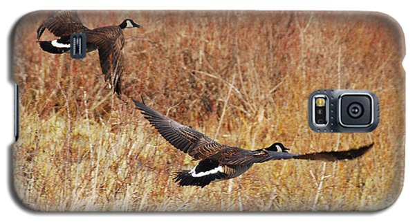 Galaxy S5 Case featuring the photograph Geese - Taking Off In Flight by Janice Adomeit