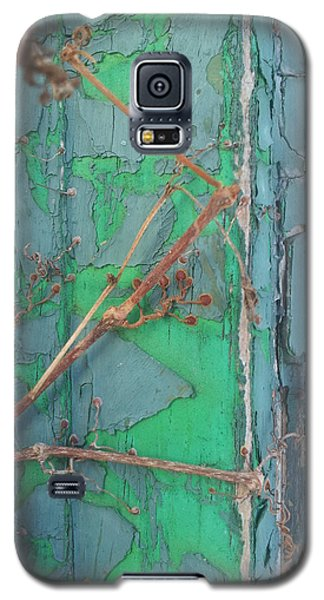 Geko Pads Galaxy S5 Case