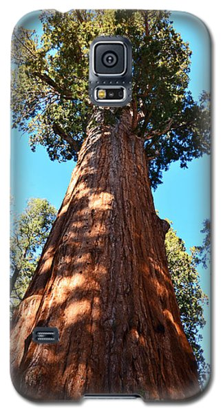 General Sherman Tree, Sequoia National Park, California Galaxy S5 Case