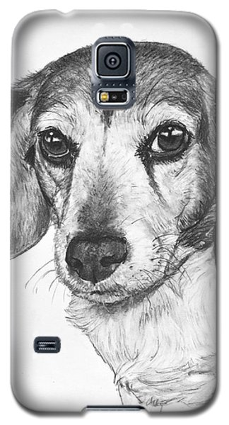 Gentle Beagle Galaxy S5 Case