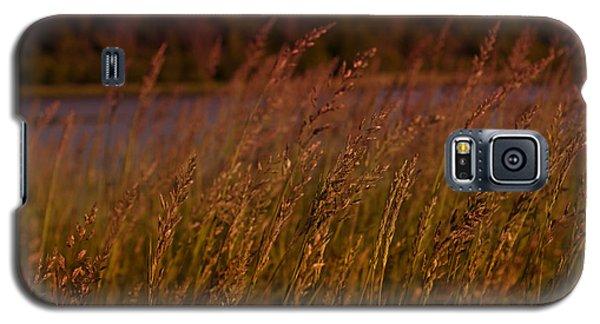 Gentle Breeze Galaxy S5 Case by Miguel Winterpacht