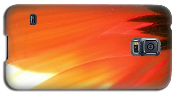 Gentle Flame Galaxy S5 Case
