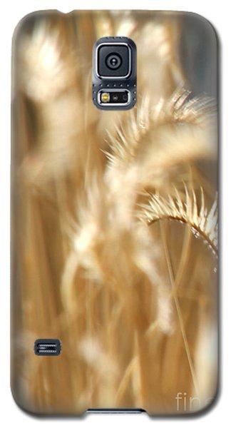 Gentle Life Galaxy S5 Case