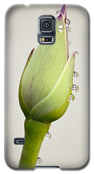 Galaxy S5 Case featuring the photograph Geometric Drops by Priya Ghose