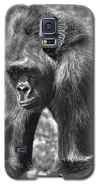 George Of The Jungle Galaxy S5 Case