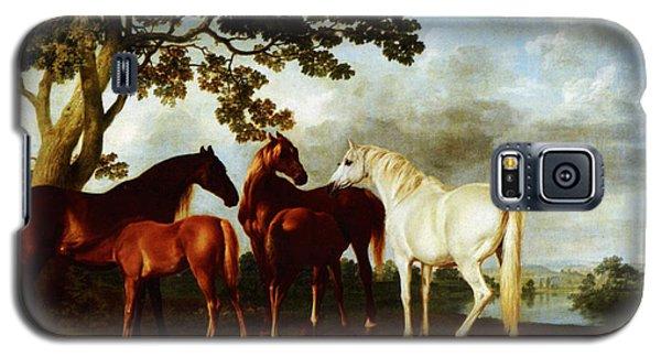 Horses Galaxy S5 Case