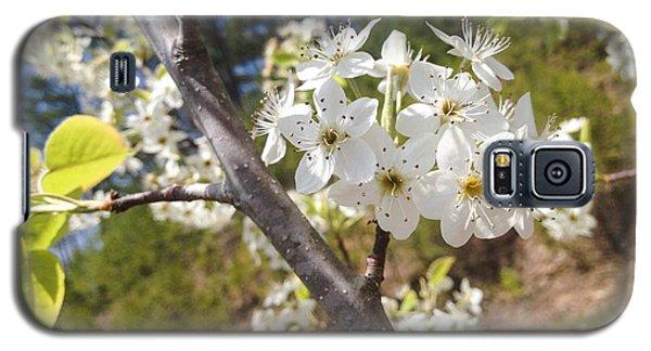 Georgia Blossoms Galaxy S5 Case by Jan Dappen