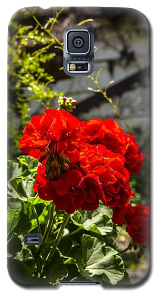 Geranium Bloom Galaxy S5 Case
