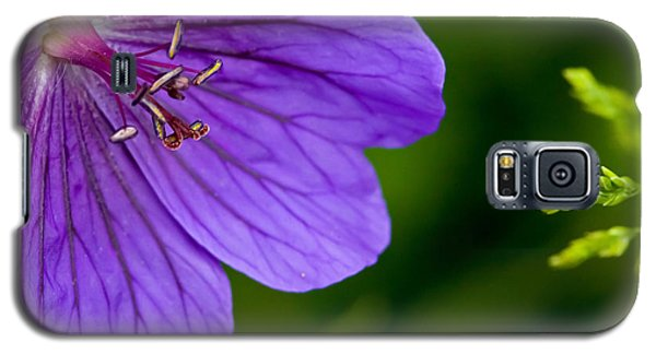 Galaxy S5 Case featuring the photograph Geranium Blues by Liz  Alderdice