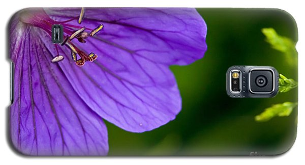 Geranium Blues Galaxy S5 Case by Liz  Alderdice