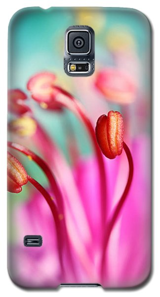 Geranium Candy Galaxy S5 Case