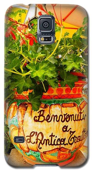 Geranium Planter Galaxy S5 Case by Pema Hou