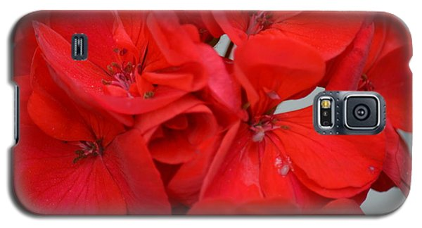 Geranium Red Galaxy S5 Case by Maria Urso