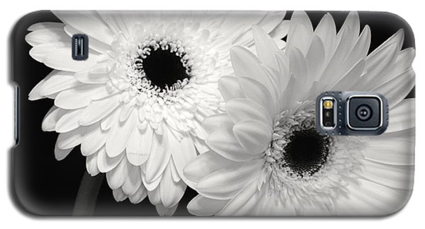 Galaxy S5 Case featuring the photograph Gerbera Daisy Sisters by Jeannie Rhode