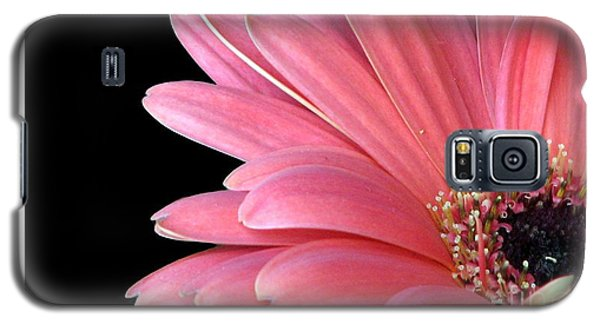Galaxy S5 Case featuring the photograph Gerbera Encore by Chris Anderson