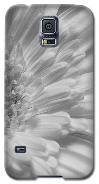 Gerbera Galaxy S5 Case