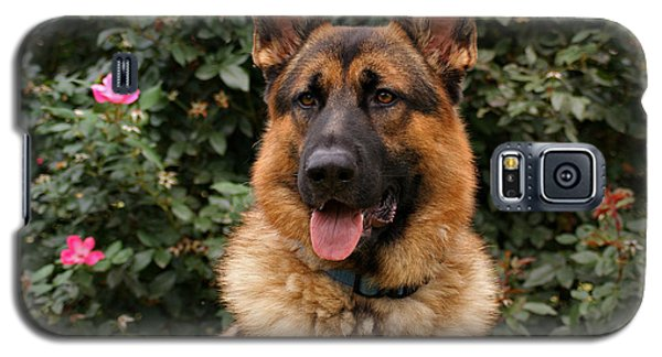 German Shepherd Dog Galaxy S5 Case