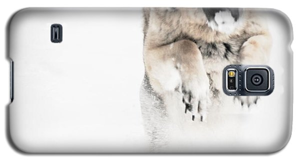 Galaxy S5 Case featuring the photograph German Shepherd In The Snow by Tanya  Searcy
