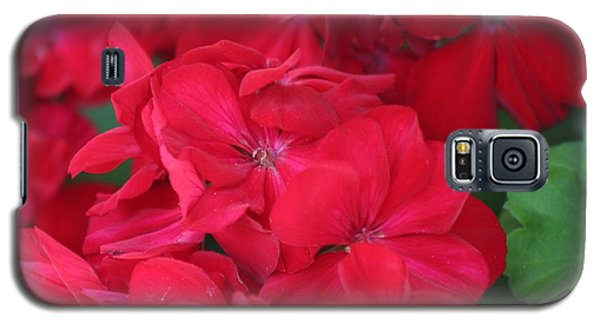 Germaniums Galaxy S5 Case by Nance Larson