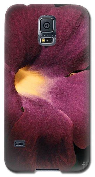 Ghana Violet Galaxy S5 Case