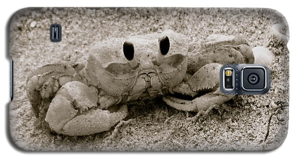 Galaxy S5 Case featuring the photograph Ghost Crab by Melinda Saminski