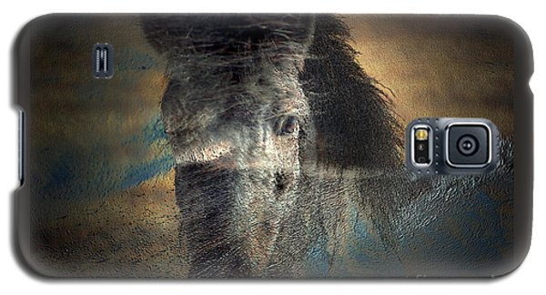Galaxy S5 Case featuring the photograph Ghost Pony by Irma BACKELANT GALLERIES