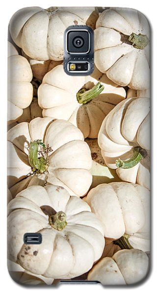 Ghost Pumpkins Galaxy S5 Case by Dawn Romine